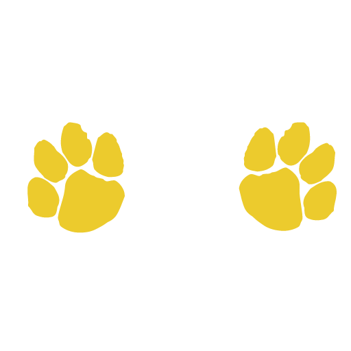 Paws in Wales